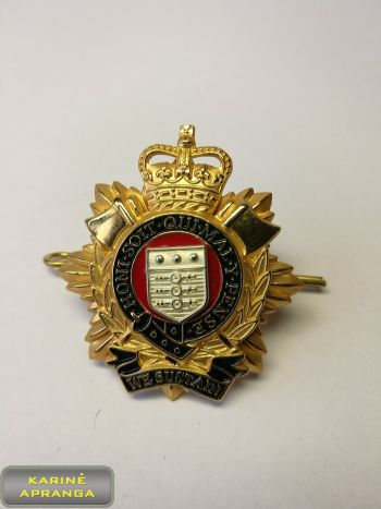 Logistikos karininko beretės ženklas. D.Britanija Nr.6